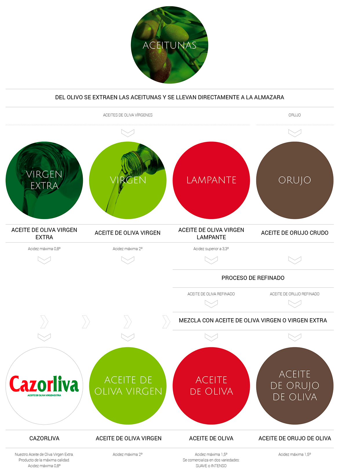 Tipos de Aceite - JAENCOOP